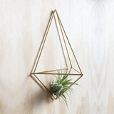 DIY wall planter Facet_