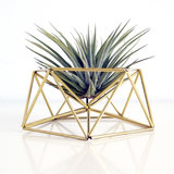 DIY table planter MARS_