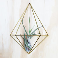DIY wall planter Diamond