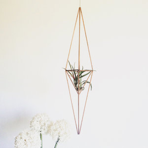 DIY hanging planter Cone